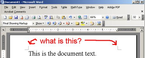 word-margin-lines.PNG