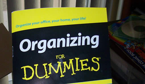 organizing-for-dummies-2.jpg